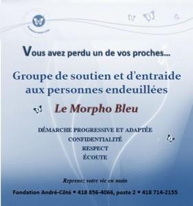 Affiche groupe soutien deuil Morpho Bleu_Journal